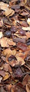 Früchtetee Schokobutten